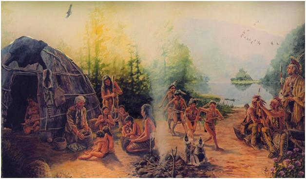 essay on native american environmental issues Major problems in american environmental history essay questions water, and soils, and by native americans (major problems in american environmental.